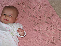 2929490508_009a903709_m_small