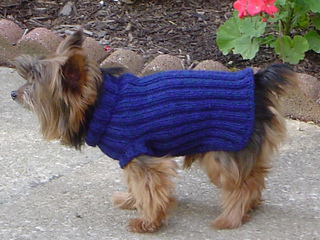 Free Dog Coat Knitting Patterns