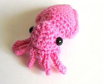 Cuttlefish_front_small_best_fit