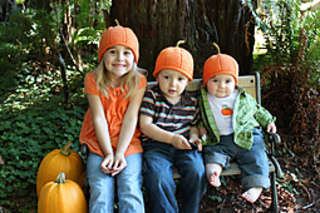 Three_little_pumpkins_034_copy_small2