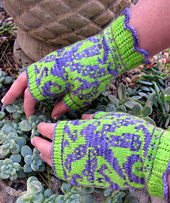 Dragonfly_mitts_3_small_best_fit