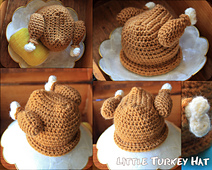 Turkeyhat_small_best_fit