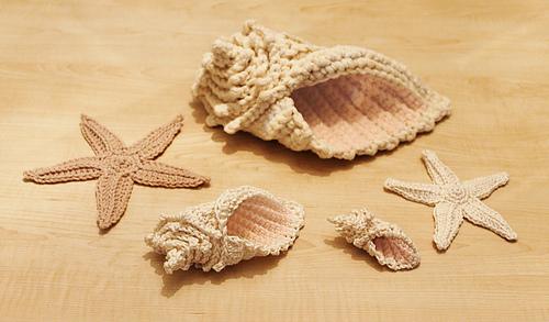 Shells_medium