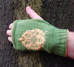 Gotgloves_tyrell1_small