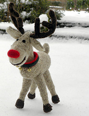 Rudolph_1_small