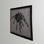 Spider_01_square_small_best_fit