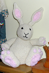 Bunny04a_small_best_fit