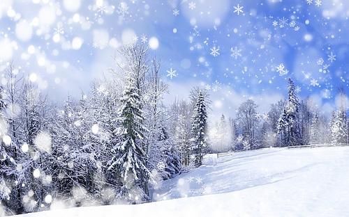 Lady_winter_medium