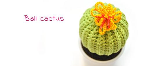 En-ball-cactus_medium