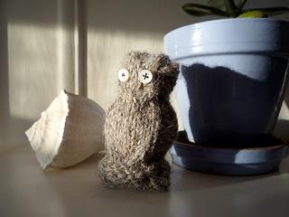 Owl_005_small2