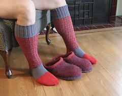 Ez_socks_on_kelly_small