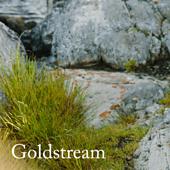 20170608_goldstream_spoiler_small_best_fit