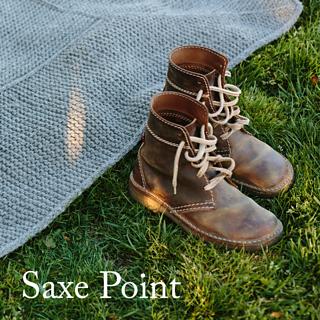 20170608_saxe_point_spoiler_small2