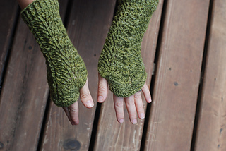 Coon_creek_mitts_and_reed_late_august_2013_021_small2