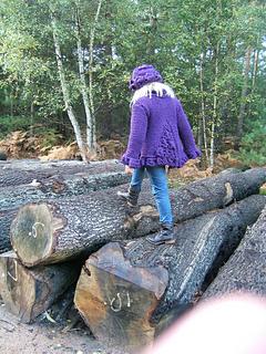 Blueberry_sweater_walking_along_logs_back_shot_small2