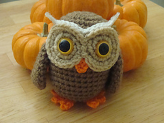 Owl_008_small