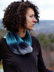 Bird_cowl_small