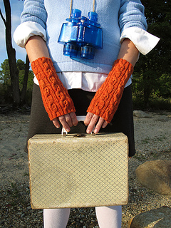 Fiery_searcher_mitts__suitcase_75_small2