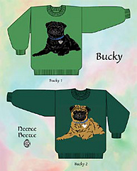 Bucky_small