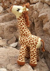 Giraffe_side_small