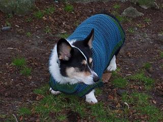 Rileysweater1_small2