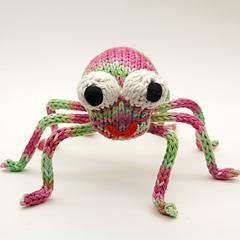 Spider4_small