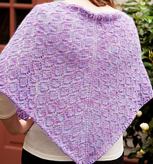 Purple-back-300ppi-11in-horiz-3798-web_small