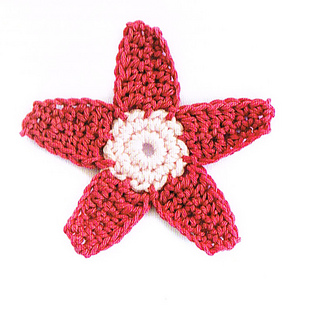 Star_flower_small2