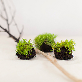 Knitted-nests-01_small2