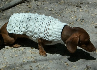 Dog_sweater_and_girls_shrug_025_small2