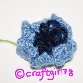 20120901-cornflower_small_best_fit
