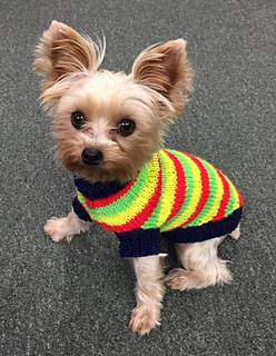 Ravelry Jacquard S Grownup Dog Sweater Pattern By Starla