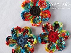 Daisy-_rainbow__10_-002_600_small