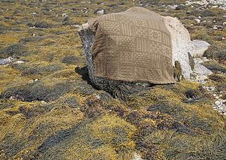 On_rock_small2