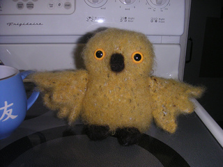 Yellow_owl_small2