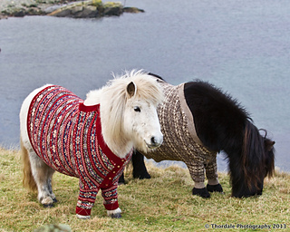 Shetlands_and_sweaters_small2