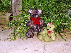 Teddy_pattern_or_kit_003_small
