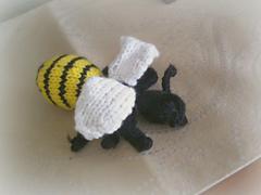 Wasp2_small