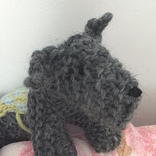 Dog13_small2