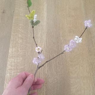 Bloss1_small2