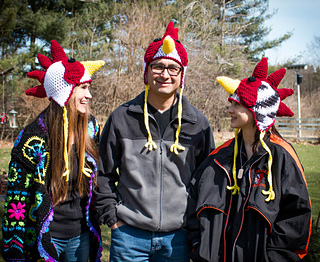 Chicken_rooster_hats_march_2017-8_copy_small2