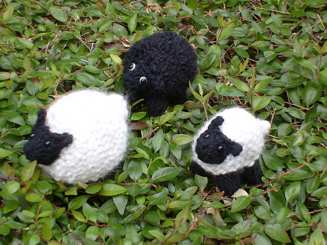 Ravelry Knitted Sheep Christmas Sheep Ornament Pattern By Teresa