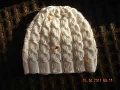 Dscn0992_small