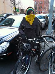 O_bikecowl_small