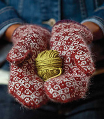 Tapestry-mittens_small