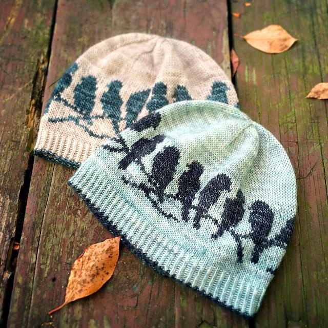 Ravelry Passerine Hat Pattern By Erica Heusser