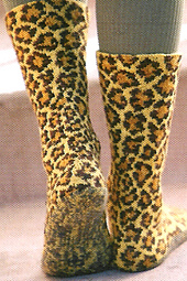 Leopards2_small_best_fit