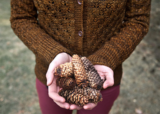 Pomme-de-pin-cardigan-detail_small2