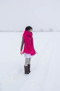 Bramble_in_the_snow-23_small2
