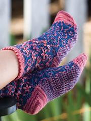 Longbourn-socks_kristi-schueler_cropped_small